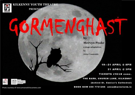 Kilkenny Youth Theatre Poster