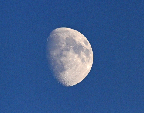 Day 199 Moon Wexford