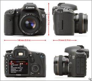 Canon 7D DSLR