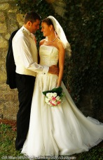 Weddings (111)