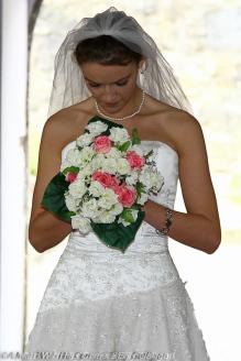 Weddings (88)